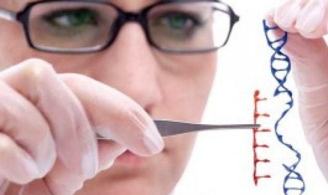 Genetic Causes For High Cholesterol Are Rare: Study